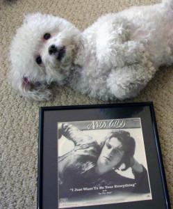 Ringo + Andy Gibb 003