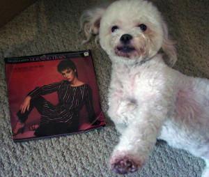 Ringo + Sheena