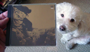 Winston + U2