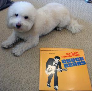 Winston + Chuck 2014-06-30 11.25