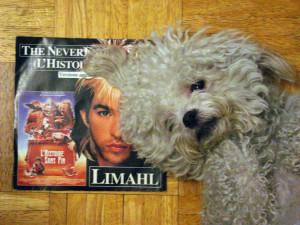 Ringo + Limahl