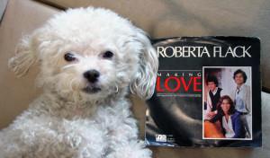 Ringo + Roberta