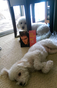 doggies + Elvis