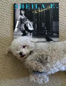 Ringo + Sheila E2