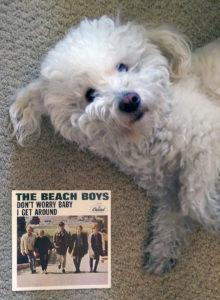 Winston + Beach Boys